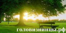 Интернет-сообщество собственников коттеджного поселка Головизнинцы - 3